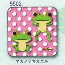画像1: カエル博士 ハンカチ(アカメアマガエル)