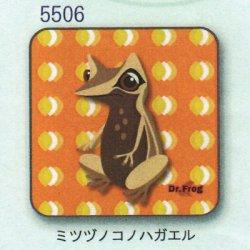 画像1: カエル博士 ハンカチ(ミツヅノコノハガエル)