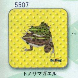 画像1: カエル博士 ハンカチ(トノサマガエル)