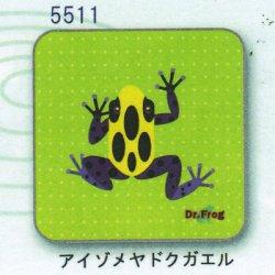 画像1: カエル博士 ハンカチ(アイゾメヤドクガエル)