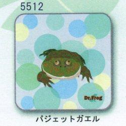 画像1: カエル博士 ハンカチ(バジェットガエル)