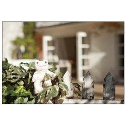 画像1: ピクルス ポストカード(お庭)