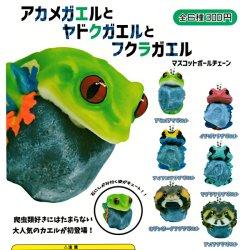 画像1: ガチャガチャ アカメガエルとヤドクガエルとフクラガエル 全6種セット